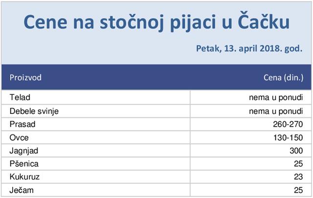stocna-pijaca-13-04